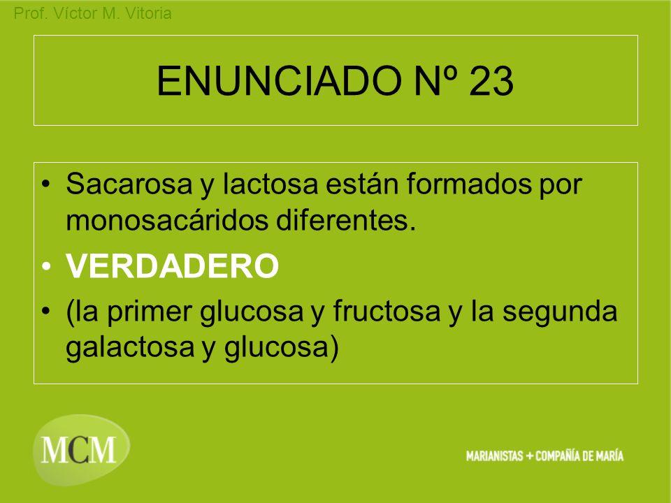 ENUNCIADO Nº 23 VERDADERO