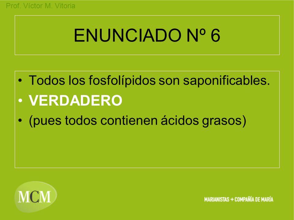 ENUNCIADO Nº 6 VERDADERO Todos los fosfolípidos son saponificables.