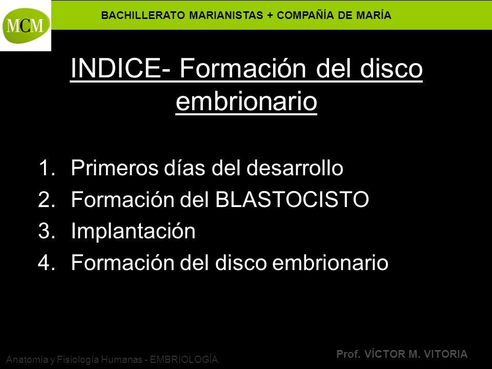 INDICE- Formación del disco embrionario
