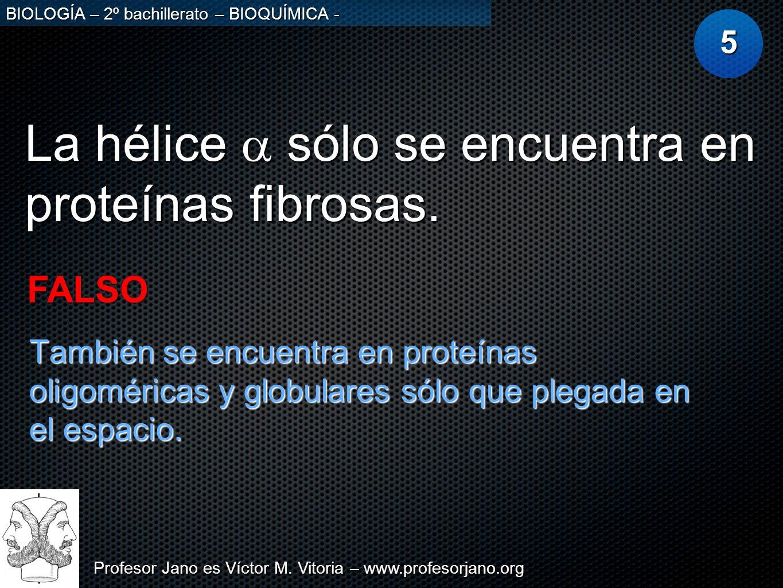 La hélice a sólo se encuentra en proteínas fibrosas.