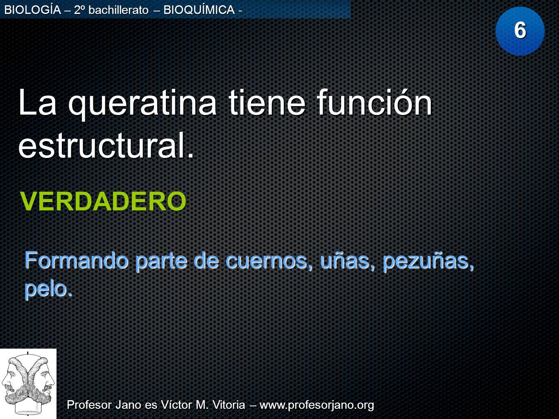 La queratina tiene función estructural.