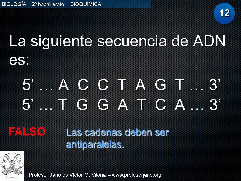 La siguiente secuencia de ADN es: