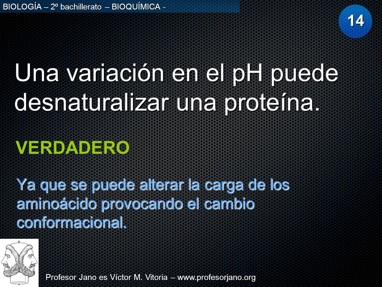 Una variación en el pH puede desnaturalizar una proteína.