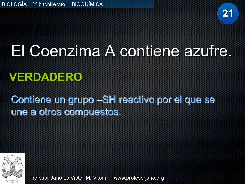 El Coenzima A contiene azufre.