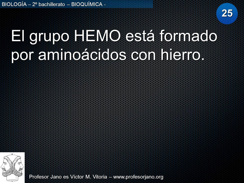 El grupo HEMO está formado por aminoácidos con hierro.
