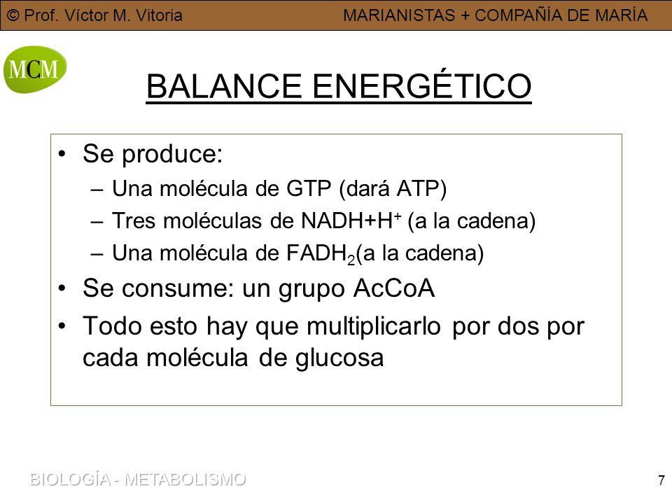 BALANCE ENERGÉTICO Se produce: Se consume: un grupo AcCoA