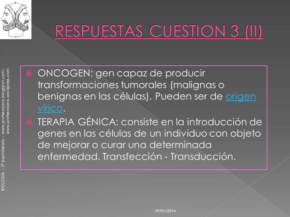RESPUESTAS CUESTION 3 (II)