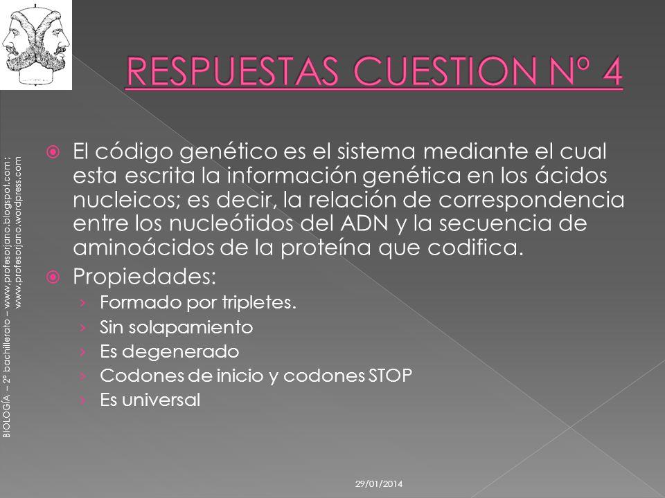 RESPUESTAS CUESTION Nº 4