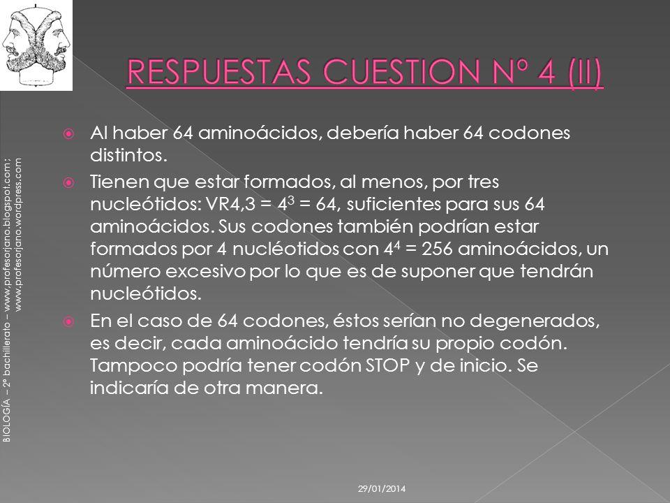 RESPUESTAS CUESTION Nº 4 (II)