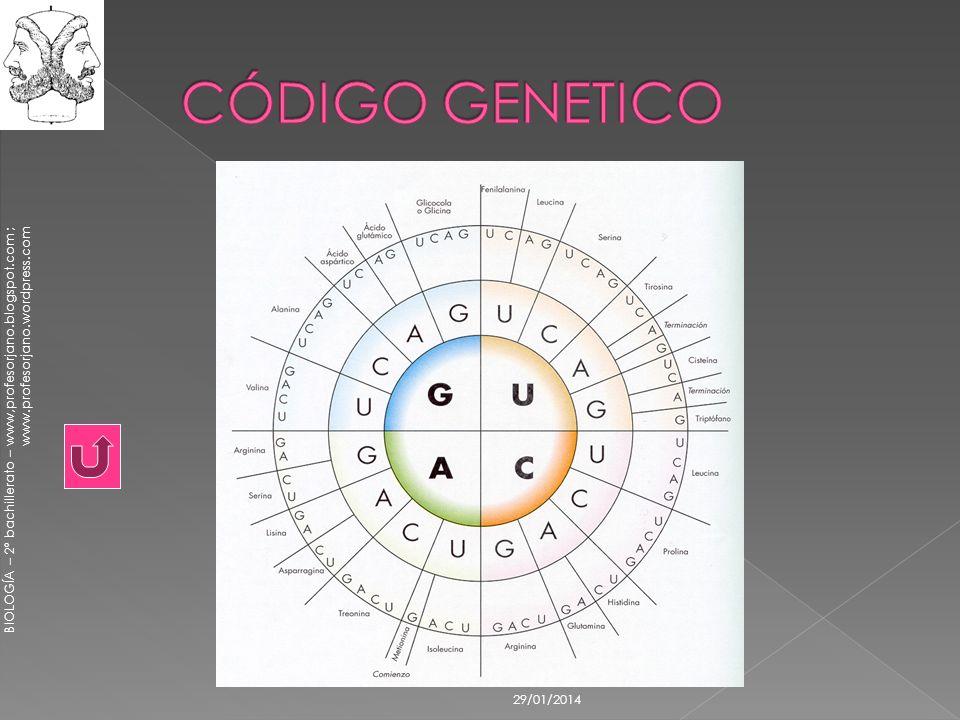 CÓDIGO GENETICO 24/03/2017
