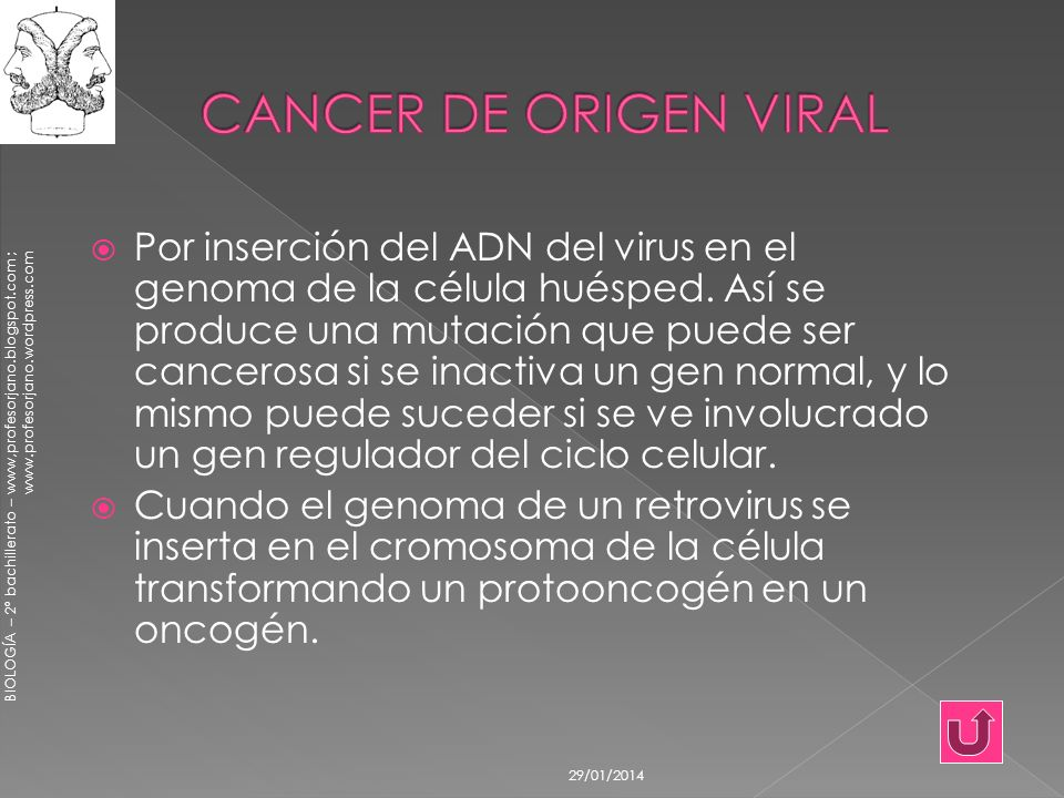 CANCER DE ORIGEN VIRAL