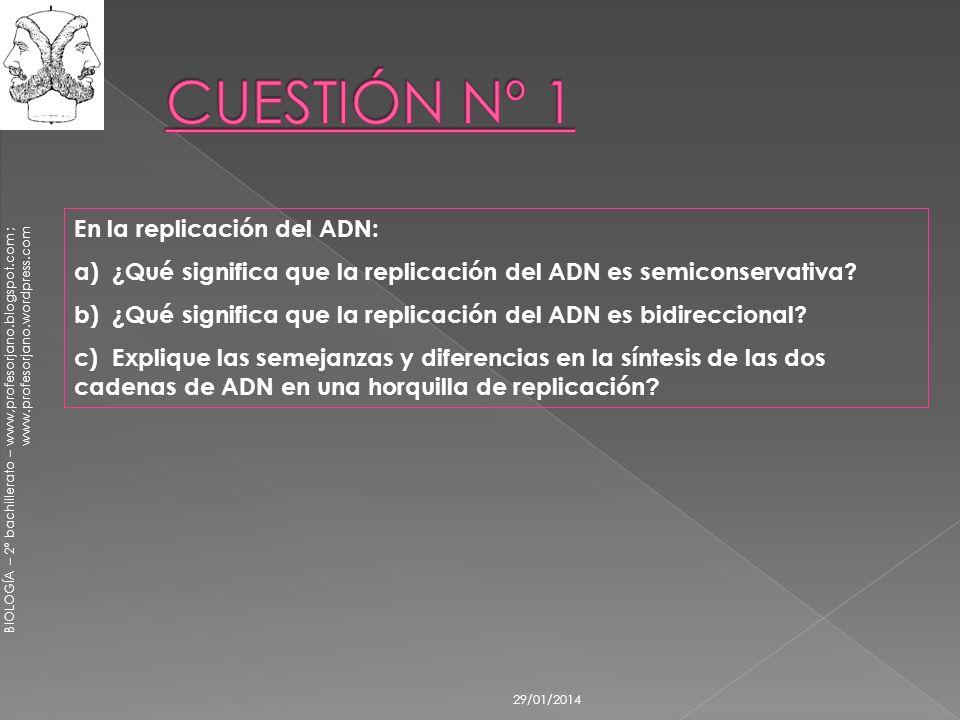 CUESTIÓN Nº 1 En la replicación del ADN: