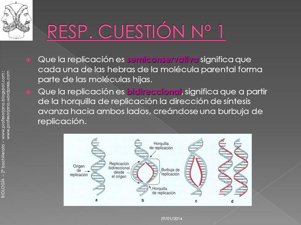 RESP. CUESTIÓN Nº 1