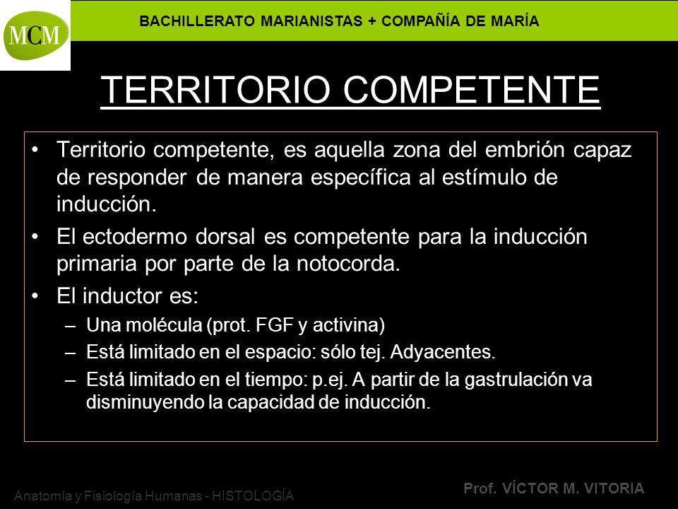 TERRITORIO COMPETENTE