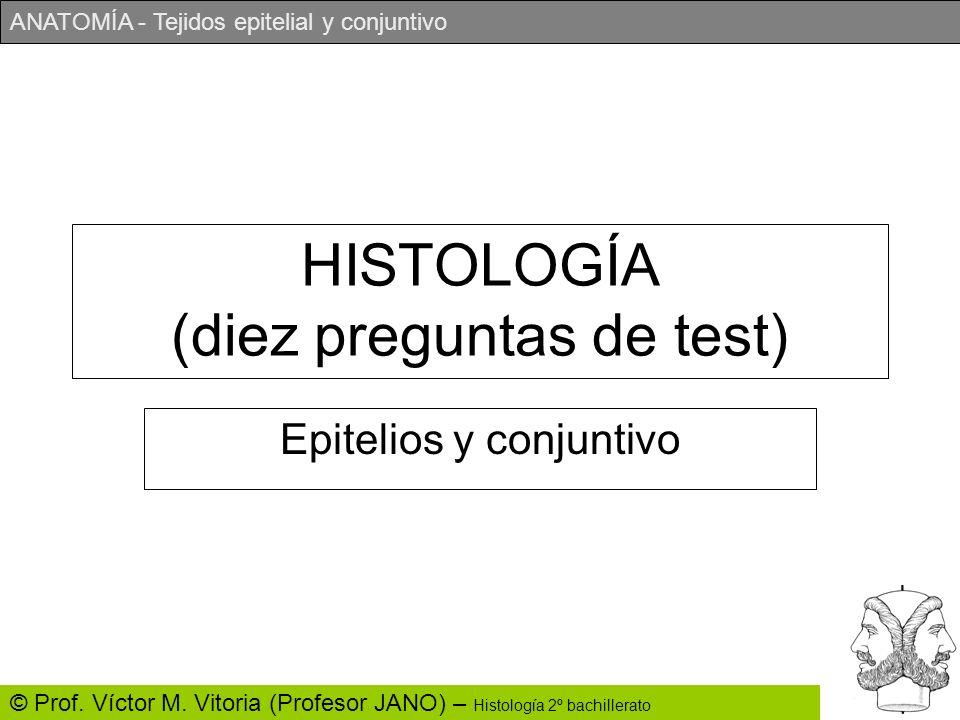 HISTOLOGÍA (diez preguntas de test)