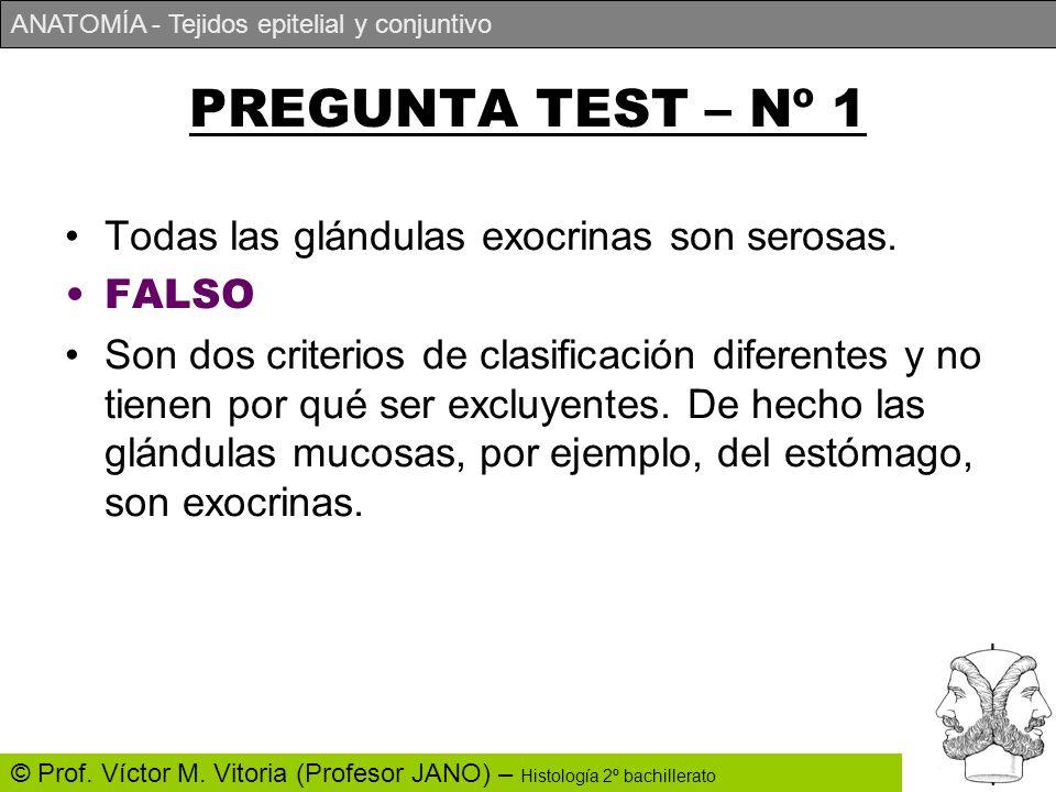 PREGUNTA TEST – Nº 1 Todas las glándulas exocrinas son serosas. FALSO