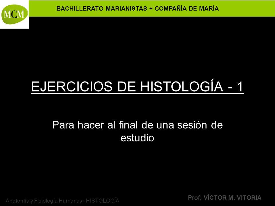 EJERCICIOS DE HISTOLOGÍA - 1