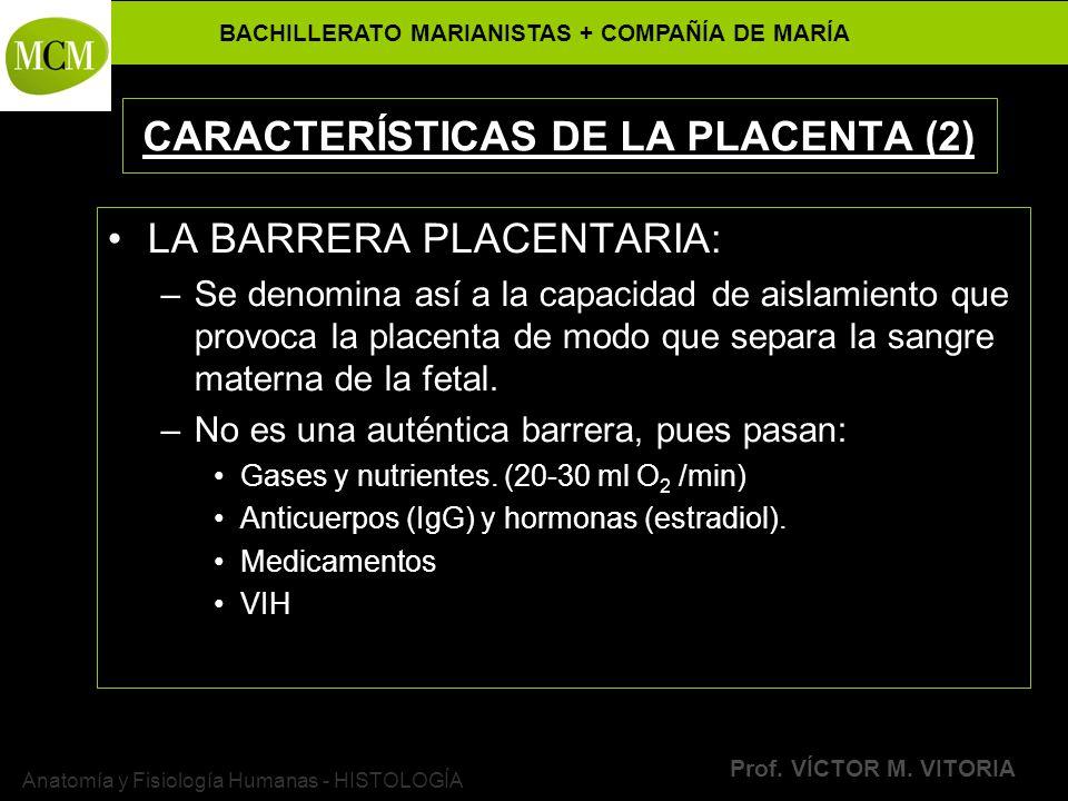 CARACTERÍSTICAS DE LA PLACENTA (2)