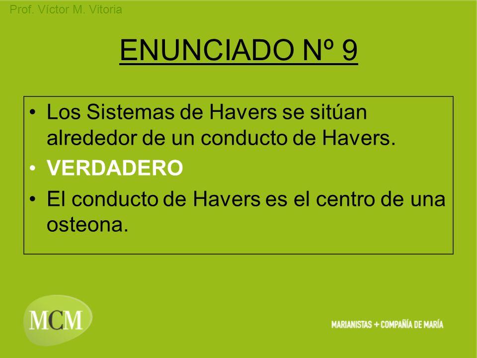 ENUNCIADO Nº 9 Los Sistemas de Havers se sitúan alrededor de un conducto de Havers.