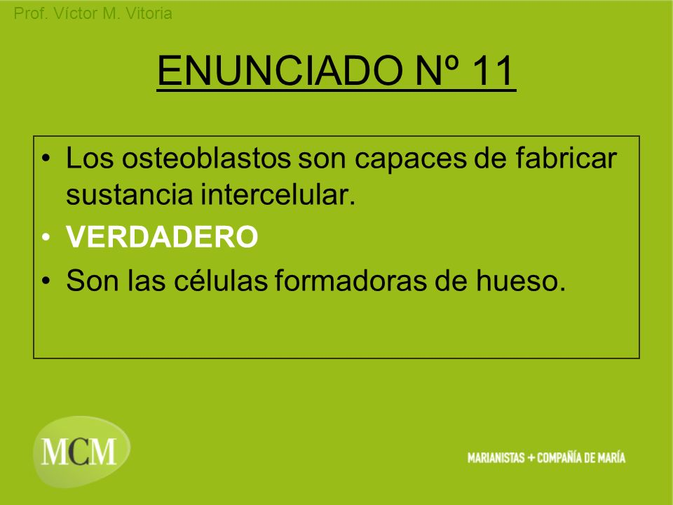 ENUNCIADO Nº 11Los osteoblastos son capaces de fabricar sustancia intercelular.