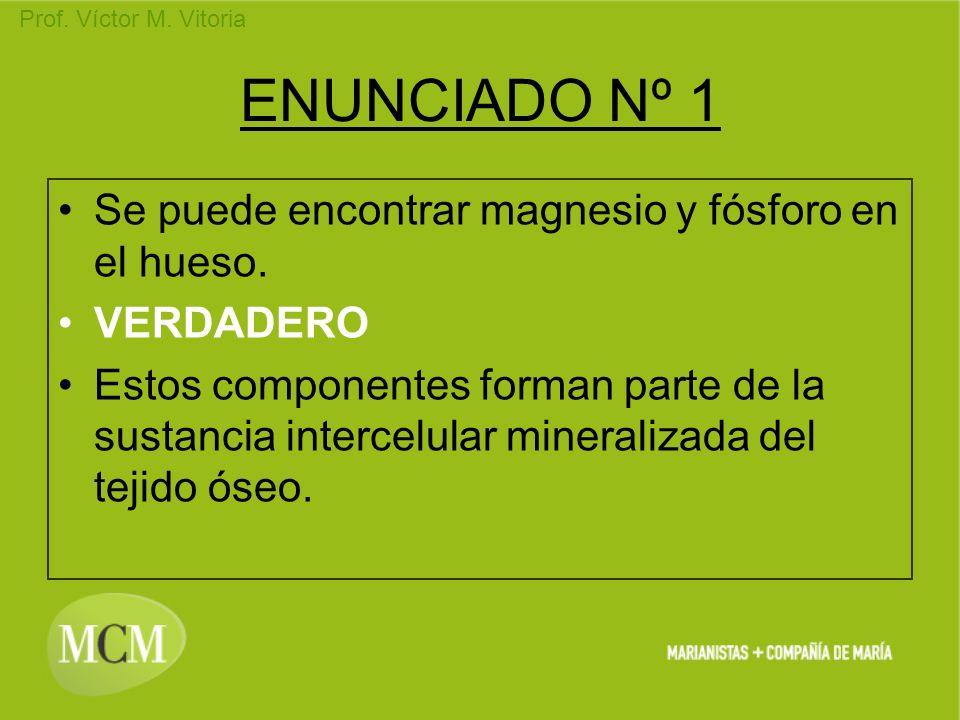 ENUNCIADO Nº 1 Se puede encontrar magnesio y fósforo en el hueso.