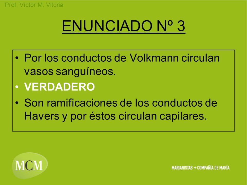 ENUNCIADO Nº 3Por los conductos de Volkmann circulan vasos sanguíneos. VERDADERO.
