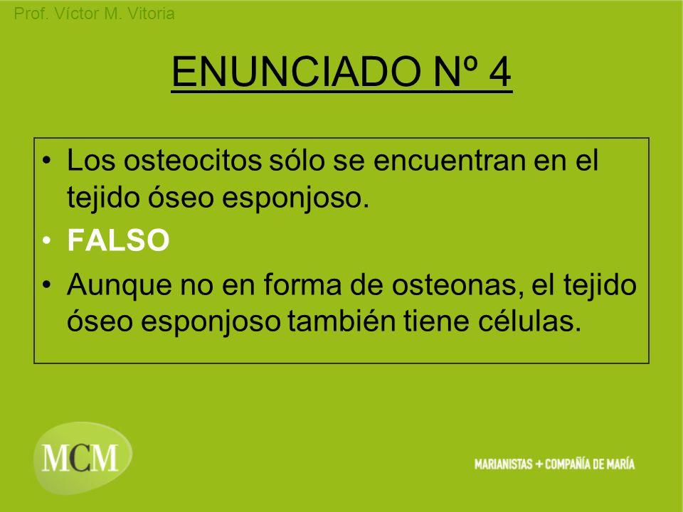ENUNCIADO Nº 4Los osteocitos sólo se encuentran en el tejido óseo esponjoso. FALSO.