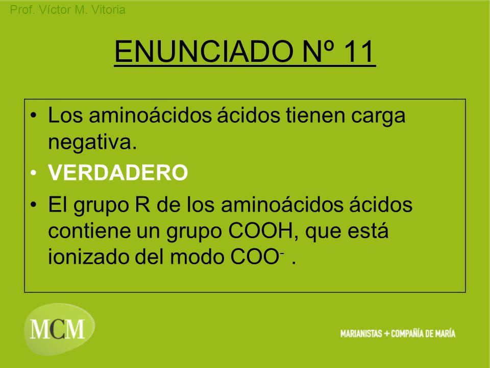 ENUNCIADO Nº 11 Los aminoácidos ácidos tienen carga negativa.
