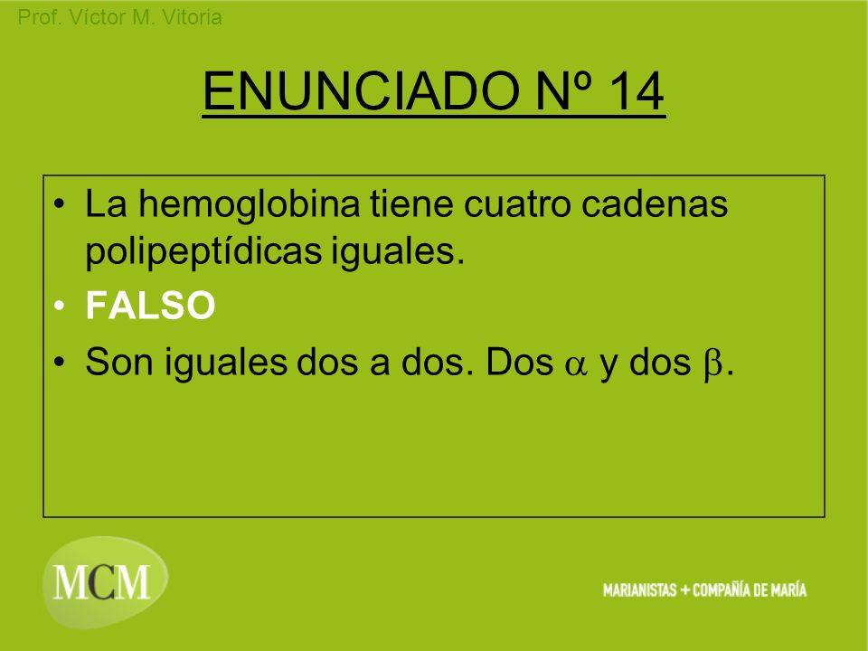 ENUNCIADO Nº 14 La hemoglobina tiene cuatro cadenas polipeptídicas iguales.