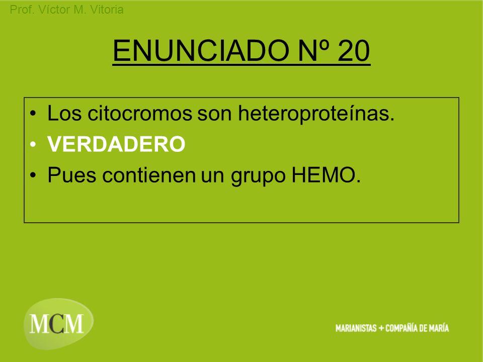 ENUNCIADO Nº 20 Los citocromos son heteroproteínas. VERDADERO