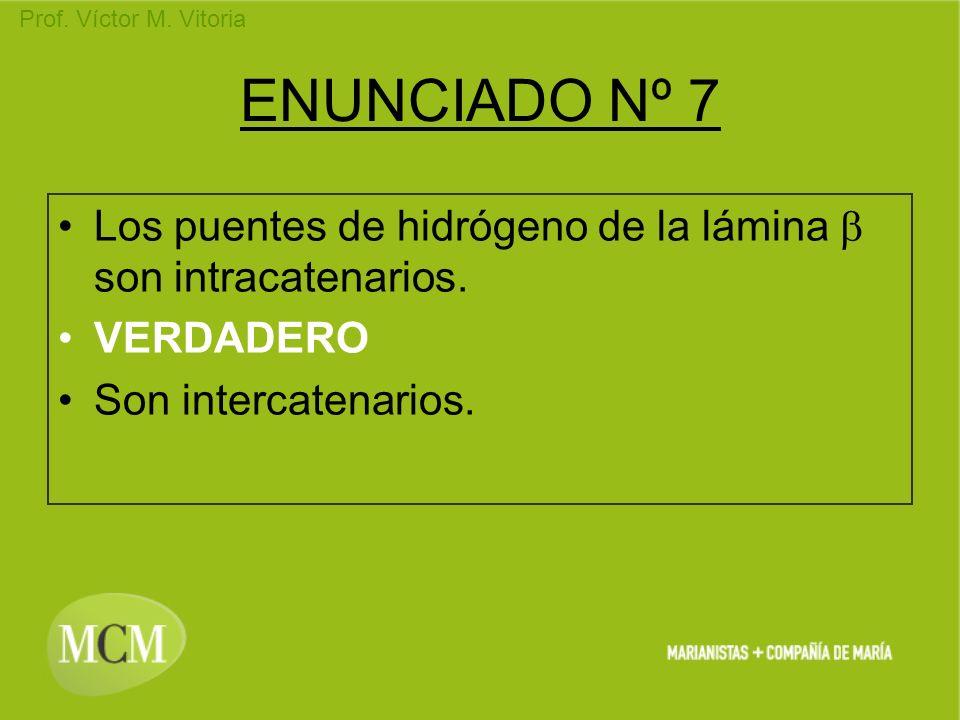 ENUNCIADO Nº 7 Los puentes de hidrógeno de la lámina b son intracatenarios.