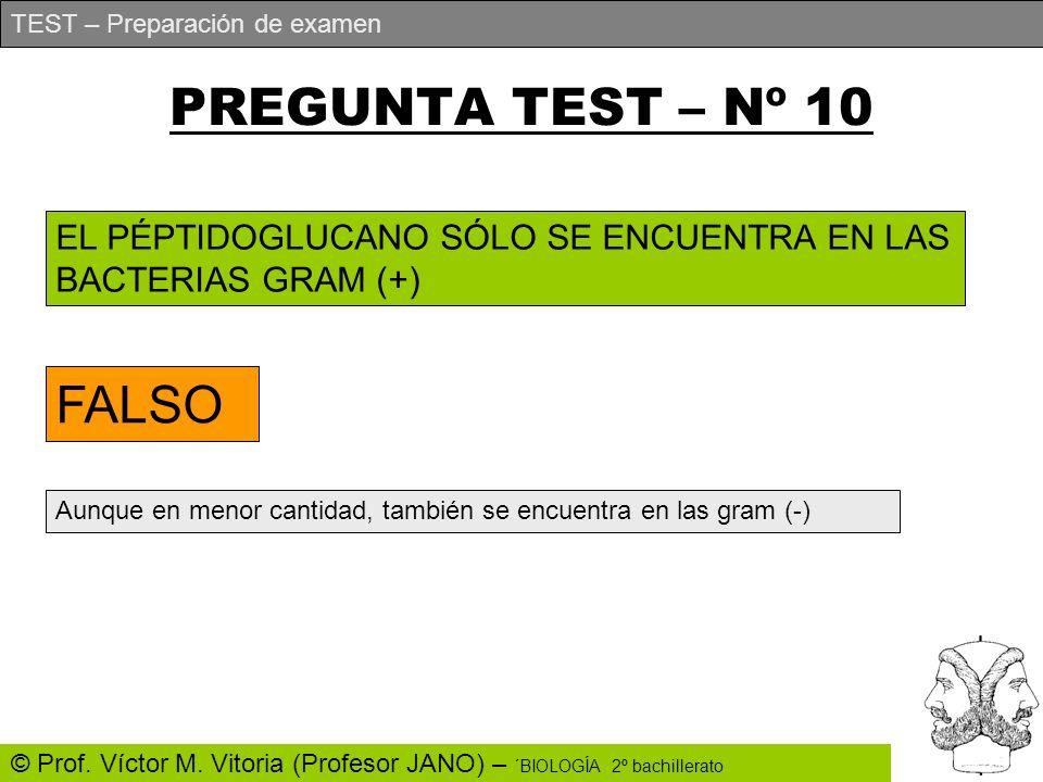 PREGUNTA TEST – Nº 10 FALSO