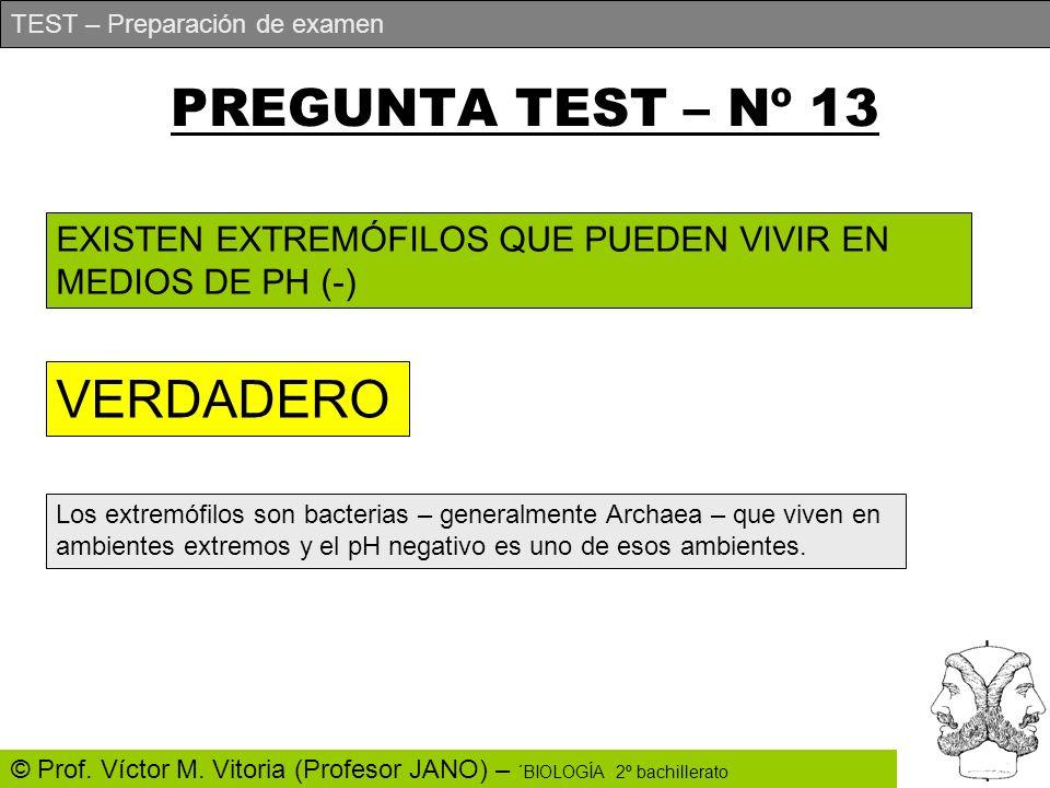 PREGUNTA TEST – Nº 13 VERDADERO