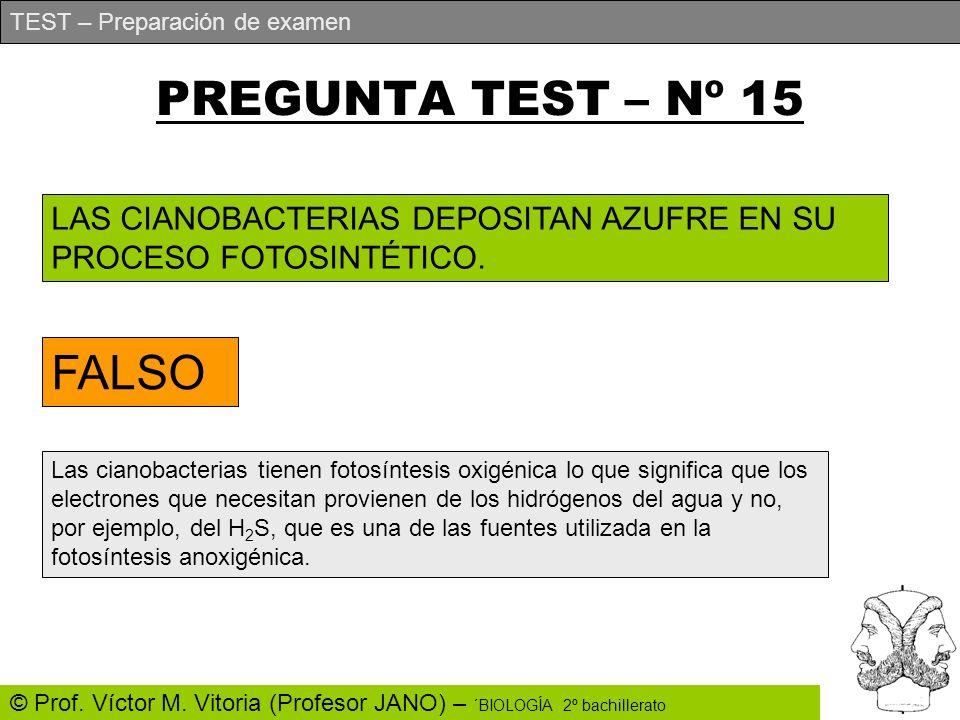 PREGUNTA TEST – Nº 15 FALSO