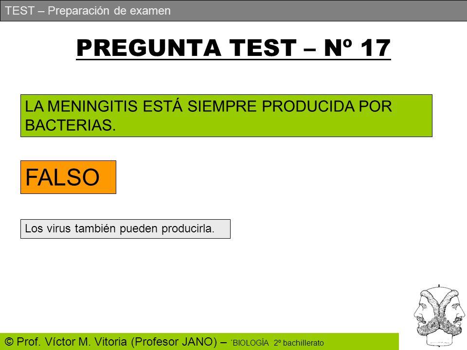 PREGUNTA TEST – Nº 17 FALSO