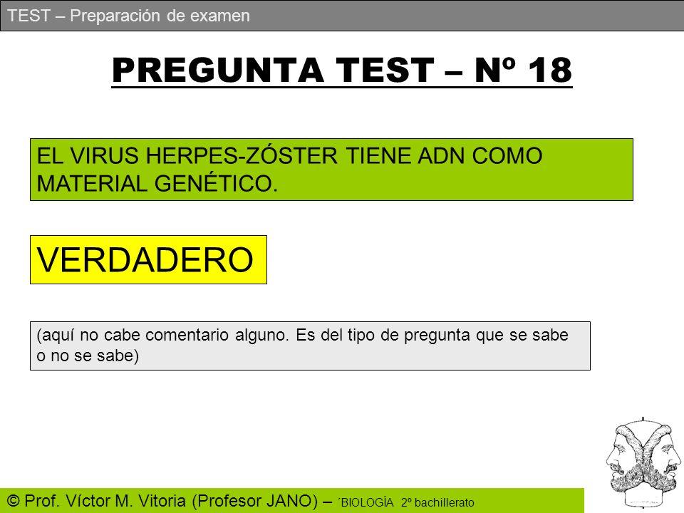 PREGUNTA TEST – Nº 18 VERDADERO