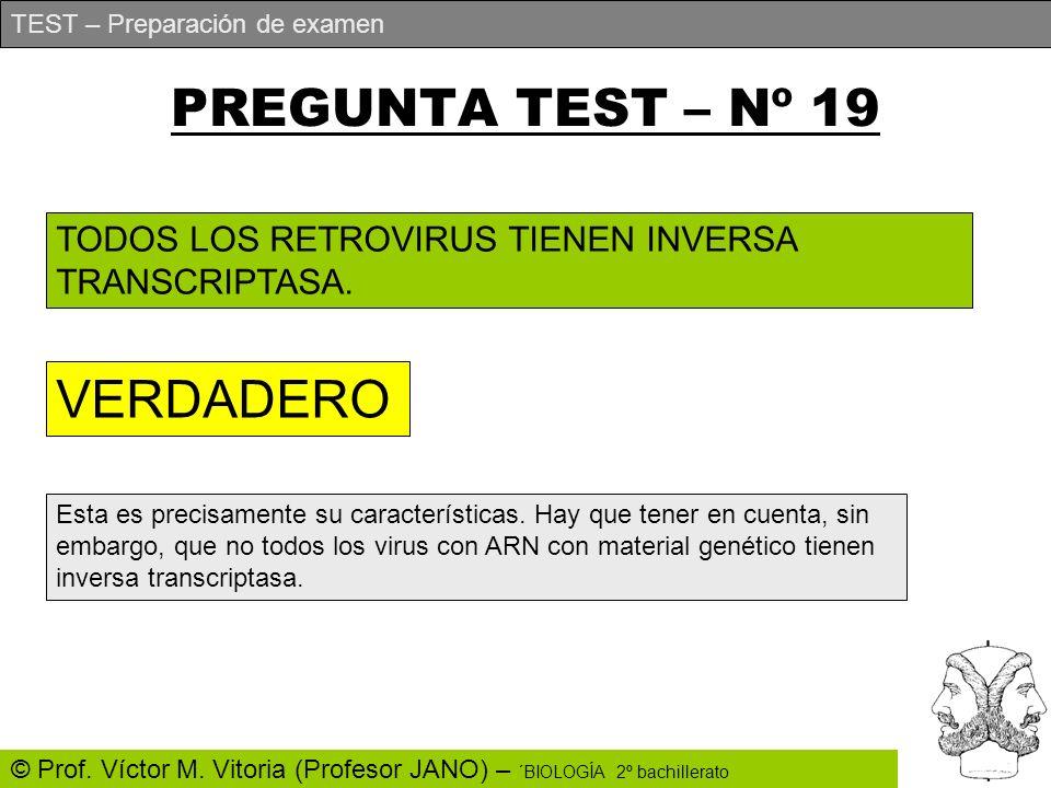 PREGUNTA TEST – Nº 19 VERDADERO