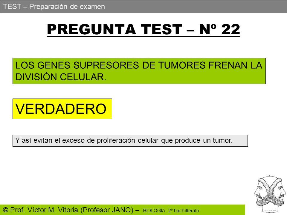 PREGUNTA TEST – Nº 22 VERDADERO