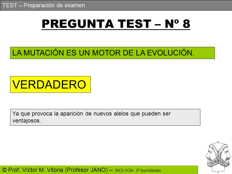 PREGUNTA TEST – Nº 8 VERDADERO
