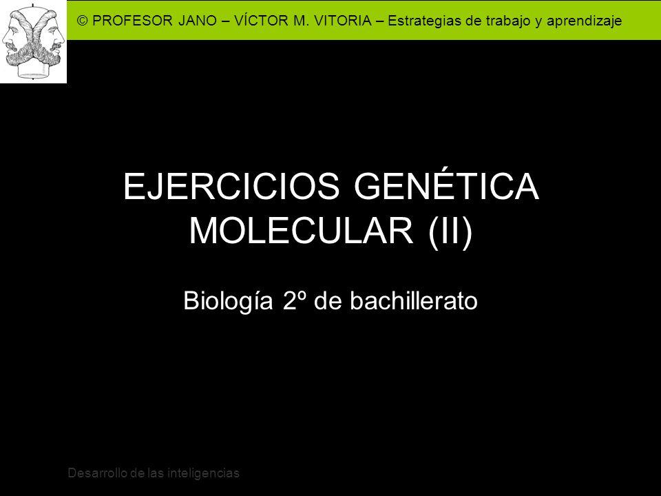 EJERCICIOS GENÉTICA MOLECULAR (II)