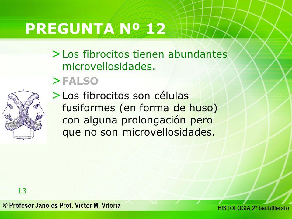 PREGUNTA Nº 12 Los fibrocitos tienen abundantes microvellosidades.