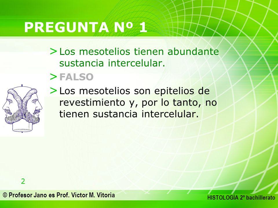 PREGUNTA Nº 1 Los mesotelios tienen abundante sustancia intercelular.