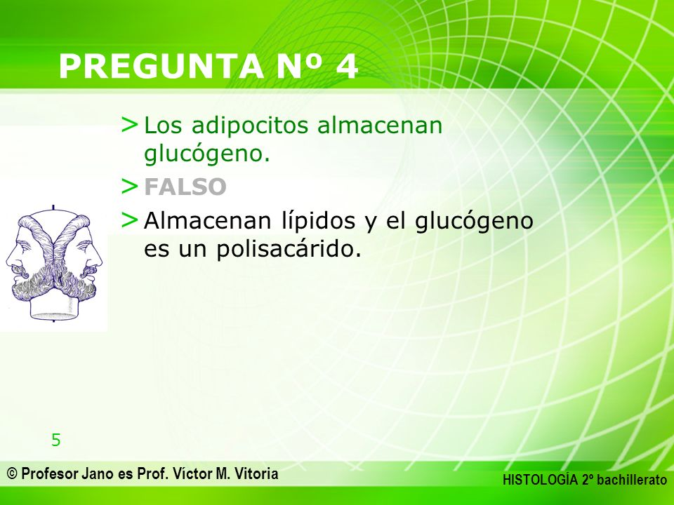PREGUNTA Nº 4 Los adipocitos almacenan glucógeno. FALSO