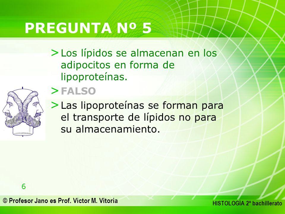 PREGUNTA Nº 5 Los lípidos se almacenan en los adipocitos en forma de lipoproteínas. FALSO.