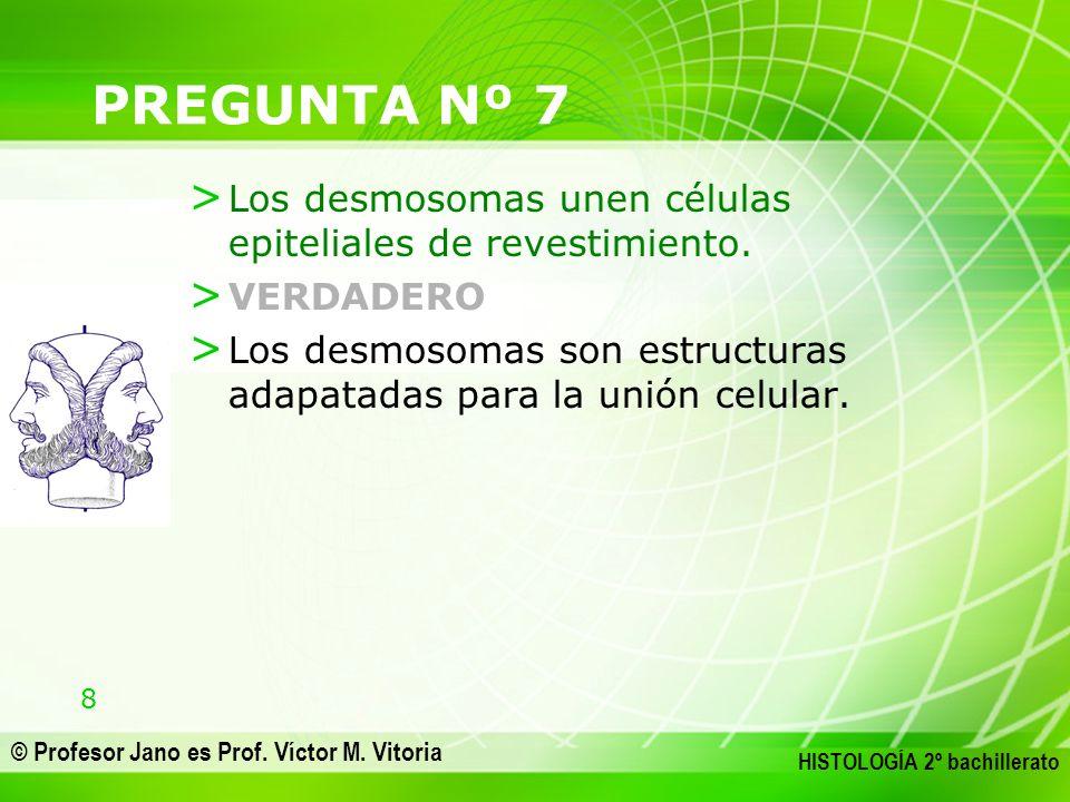 PREGUNTA Nº 7 Los desmosomas unen células epiteliales de revestimiento.