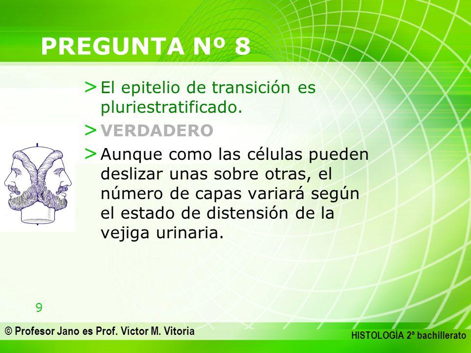 PREGUNTA Nº 8 El epitelio de transición es pluriestratificado.