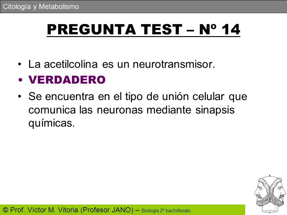 PREGUNTA TEST – Nº 14 La acetilcolina es un neurotransmisor. VERDADERO