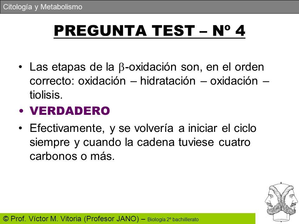 PREGUNTA TEST – Nº 4 Las etapas de la -oxidación son, en el orden correcto: oxidación – hidratación – oxidación – tiolisis.