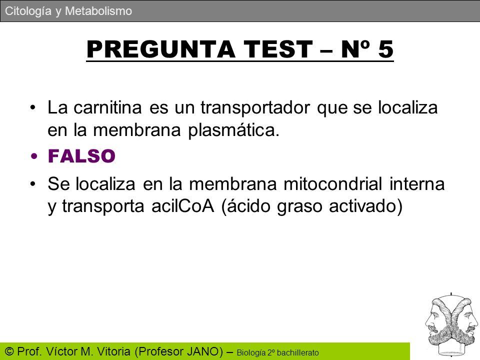 PREGUNTA TEST – Nº 5 La carnitina es un transportador que se localiza en la membrana plasmática. FALSO.