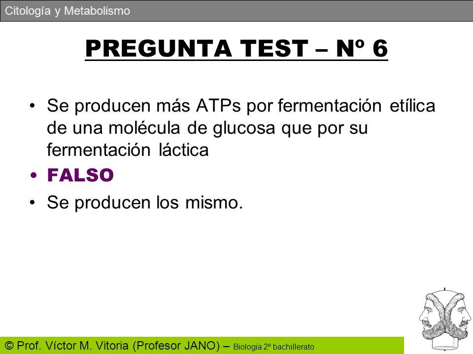 PREGUNTA TEST – Nº 6 Se producen más ATPs por fermentación etílica de una molécula de glucosa que por su fermentación láctica.